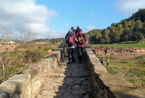 Excursió a Avinyó